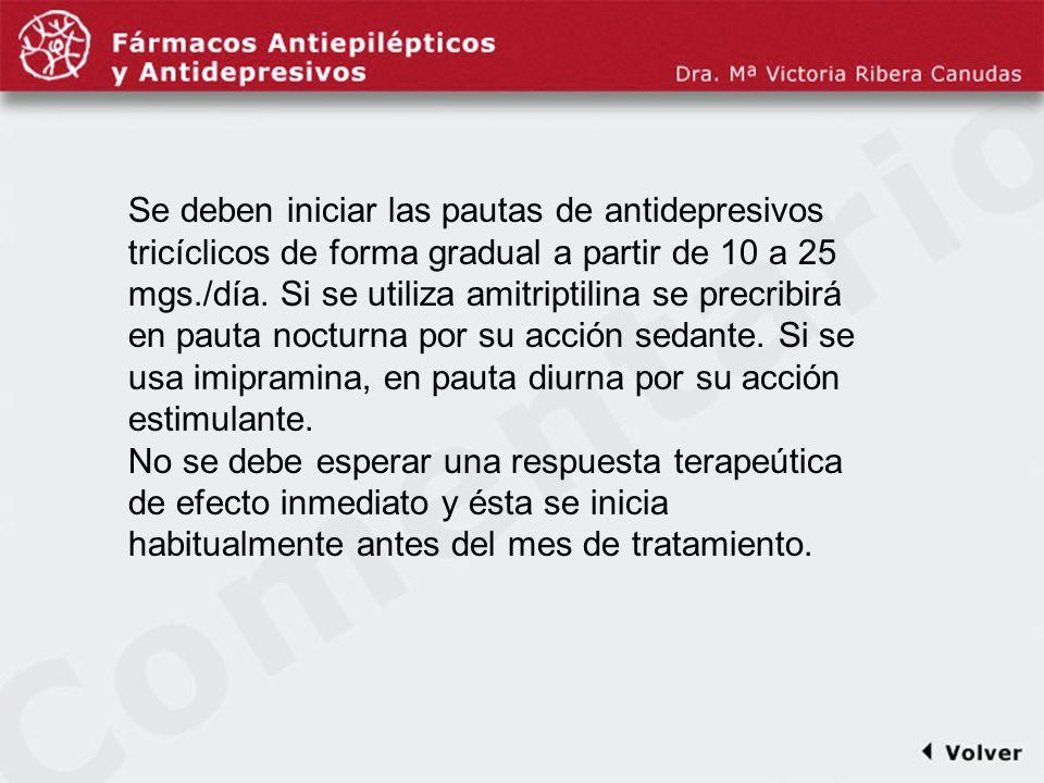 Comentariodiapo12