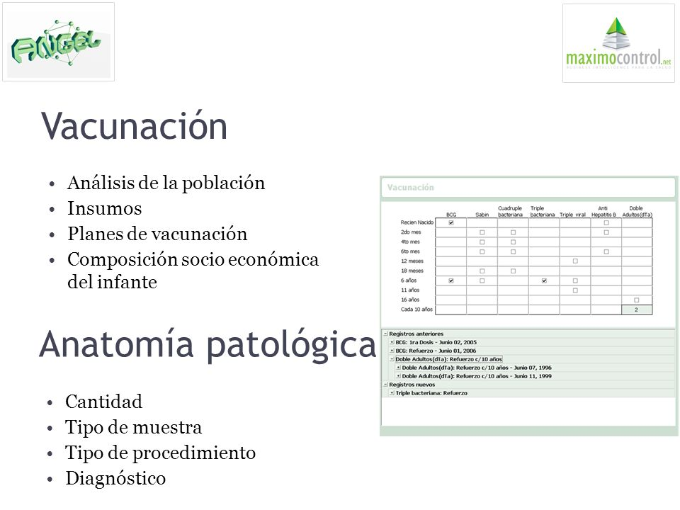 Vacunación Anatomía patológica Análisis de la población Insumos