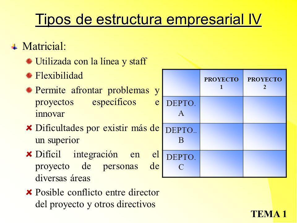 Tipos de estructura empresarial IV