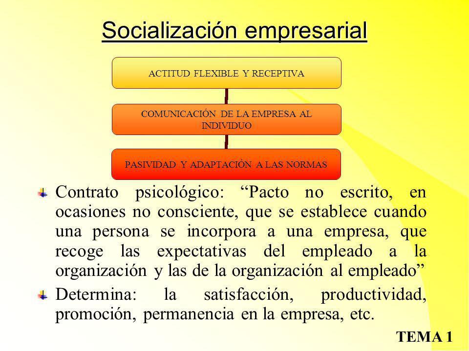 Socialización empresarial