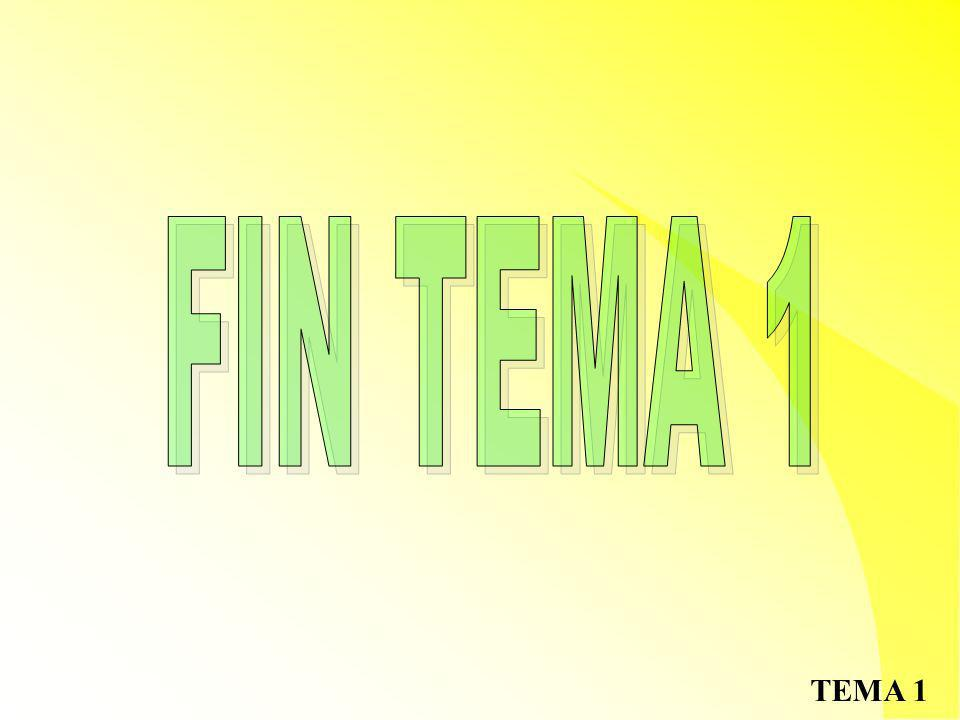 FIN TEMA 1