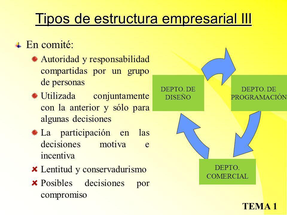 Tipos de estructura empresarial III
