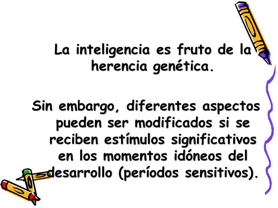 La inteligencia es fruto de la herencia genética.