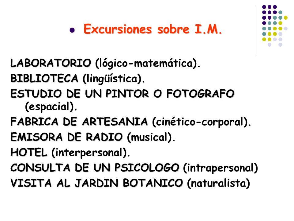 Excursiones sobre I.M. LABORATORIO (lógico-matemática).