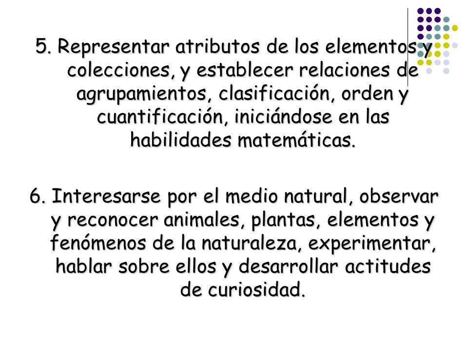 5. Representar atributos de los elementos y colecciones, y establecer relaciones de agrupamientos, clasificación, orden y cuantificación, iniciándose en las habilidades matemáticas.