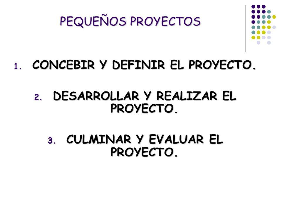 CONCEBIR Y DEFINIR EL PROYECTO. DESARROLLAR Y REALIZAR EL PROYECTO.