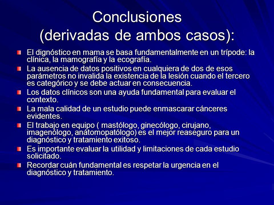 Conclusiones (derivadas de ambos casos):