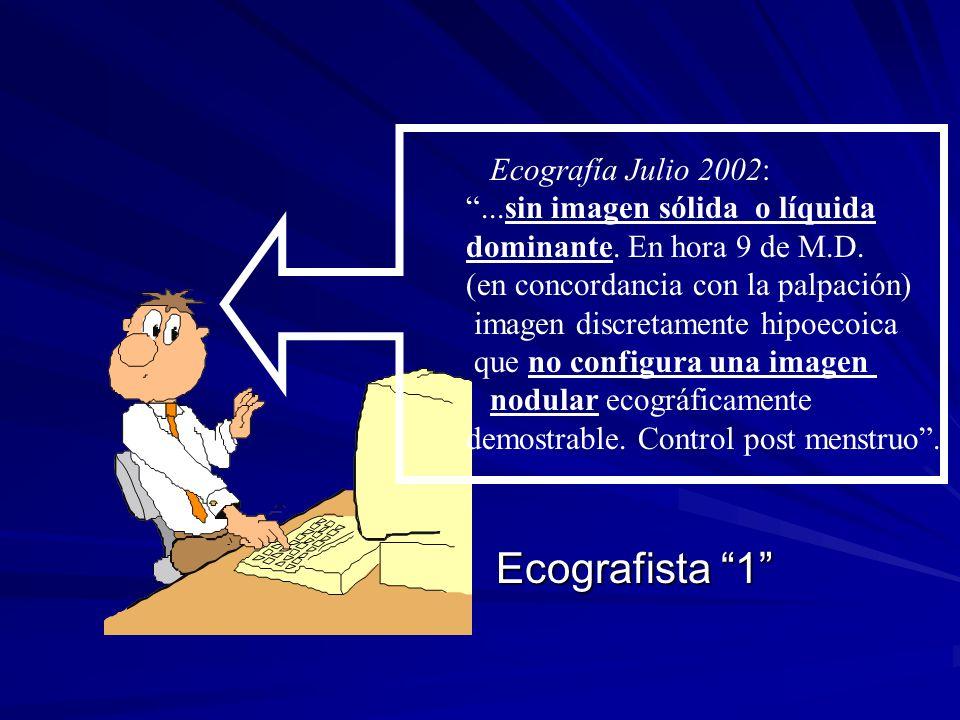 Ecografista 1 Ecografía Julio 2002: ...sin imagen sólida o líquida