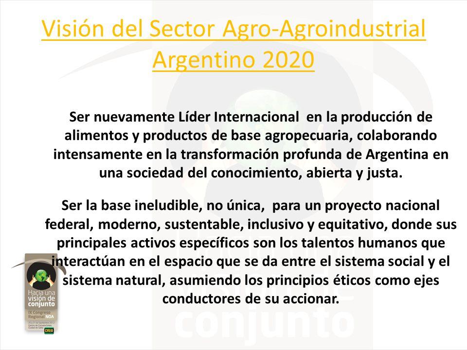 Visión del Sector Agro-Agroindustrial Argentino 2020