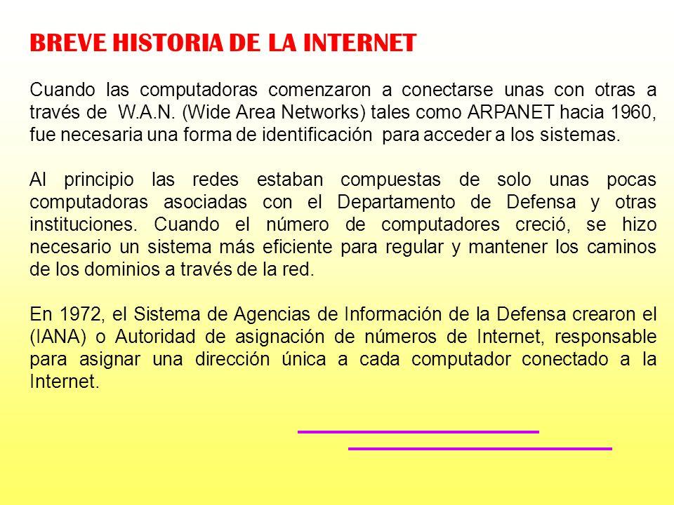 BREVE HISTORIA DE LA INTERNET