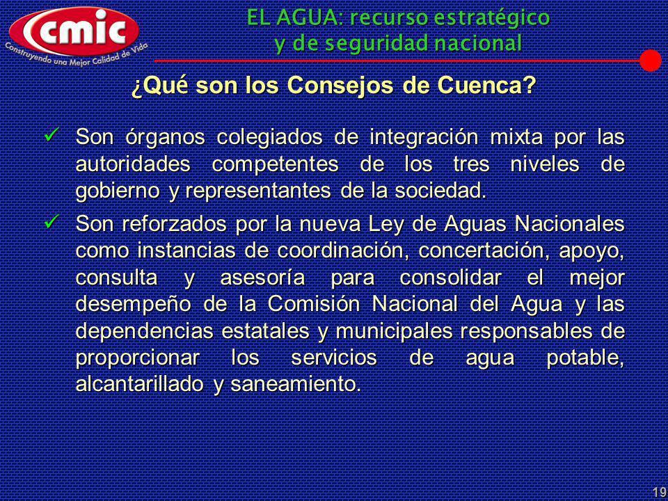 ¿Qué son los Consejos de Cuenca