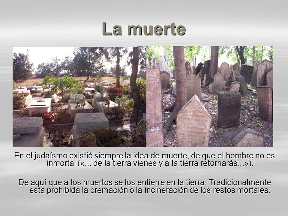 La muerte En el judaísmo existió siempre la idea de muerte, de que el hombre no es inmortal («... de la tierra vienes y a la tierra retornarás...»).