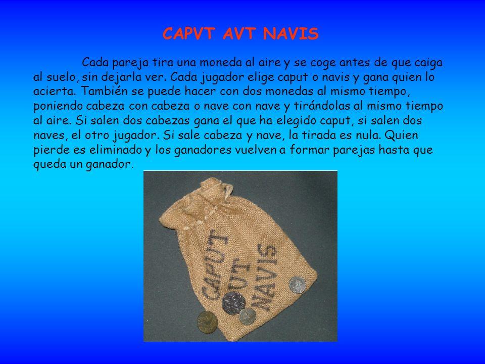 CAPVT AVT NAVIS