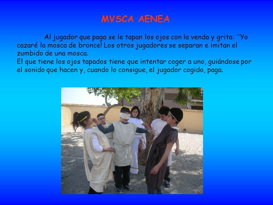 MVSCA AENEA