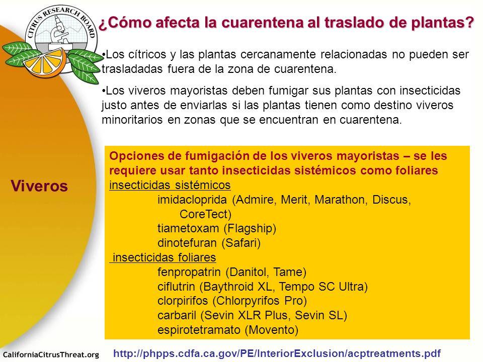Viveros ¿Cómo afecta la cuarentena al traslado de plantas