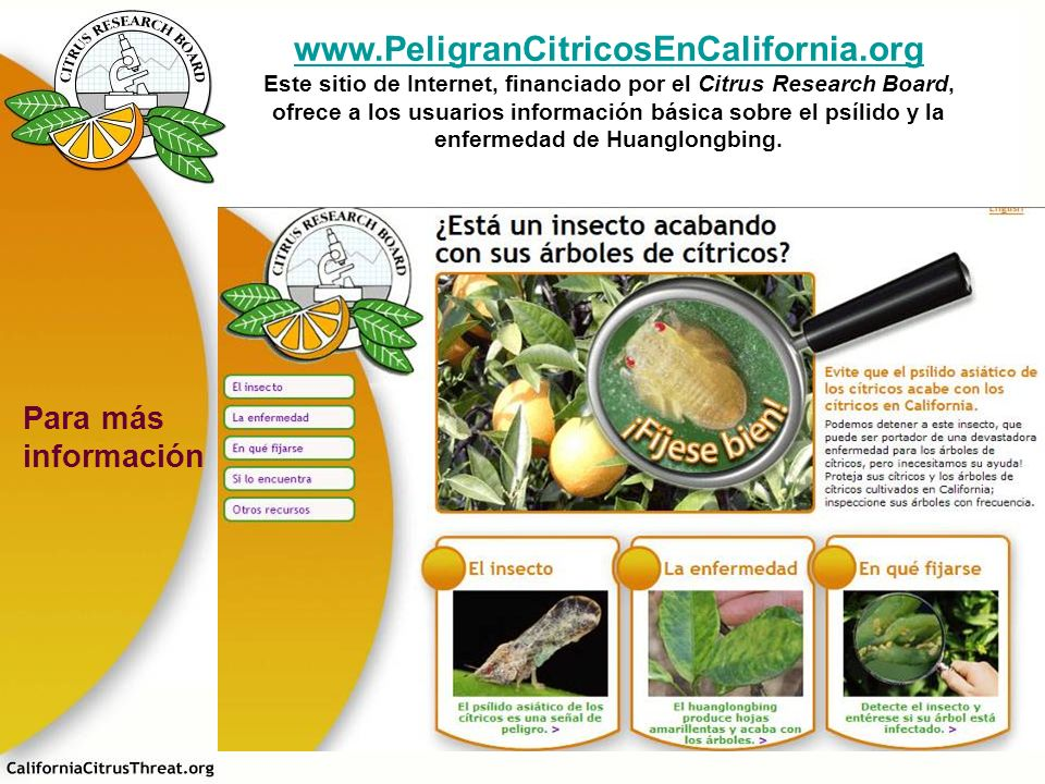 www.PeligranCitricosEnCalifornia.org Para más información