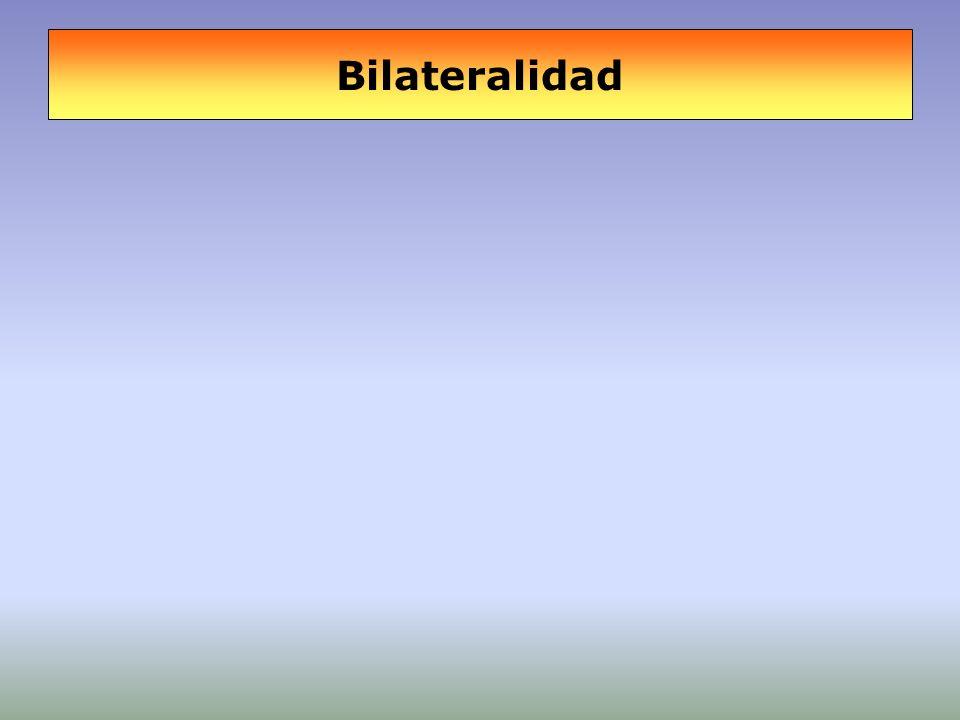 Bilateralidad
