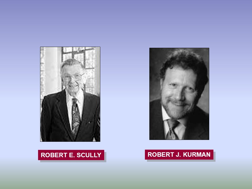 ROBERT E. SCULLY ROBERT J. KURMAN