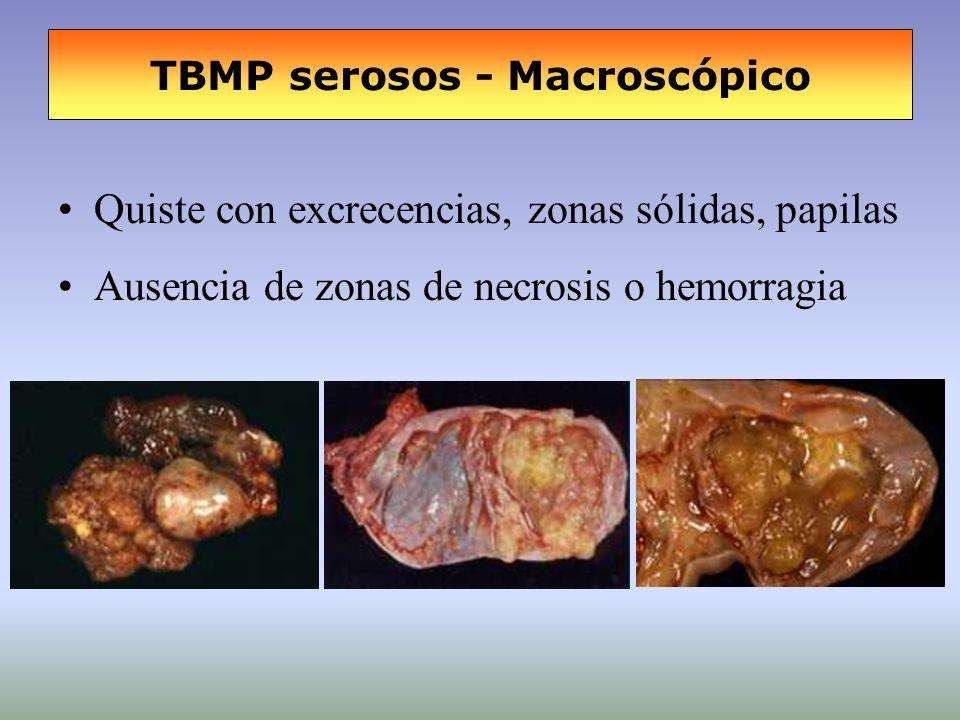 TBMP serosos - Macroscópico