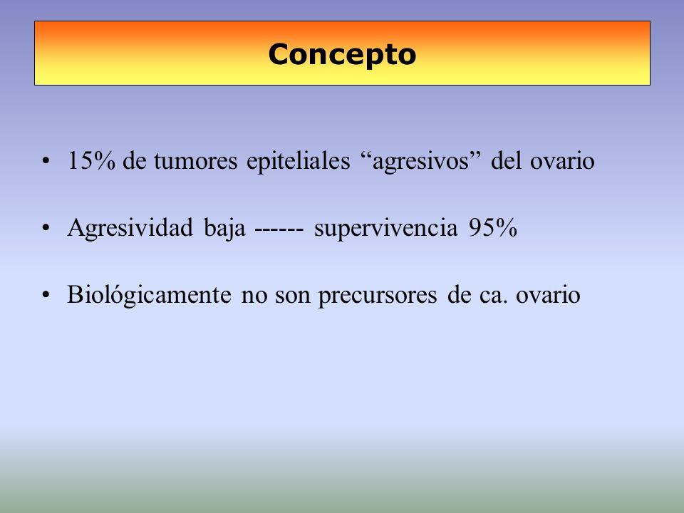Concepto 15% de tumores epiteliales agresivos del ovario