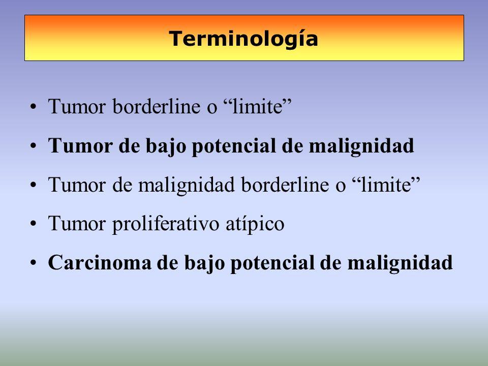 Tumor borderline o limite Tumor de bajo potencial de malignidad