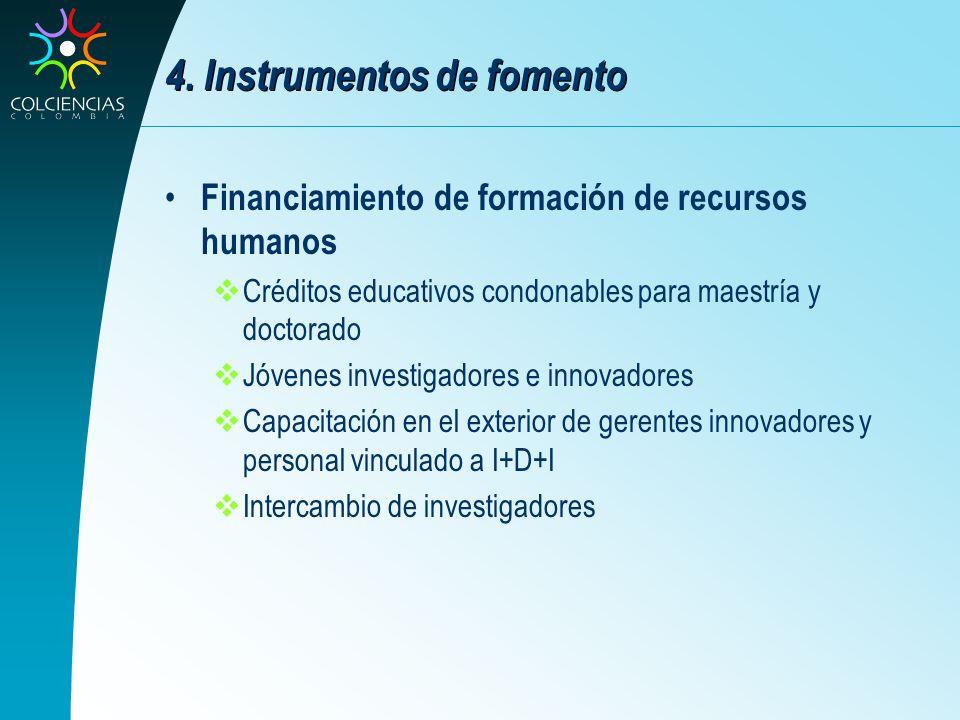 4. Instrumentos de fomento