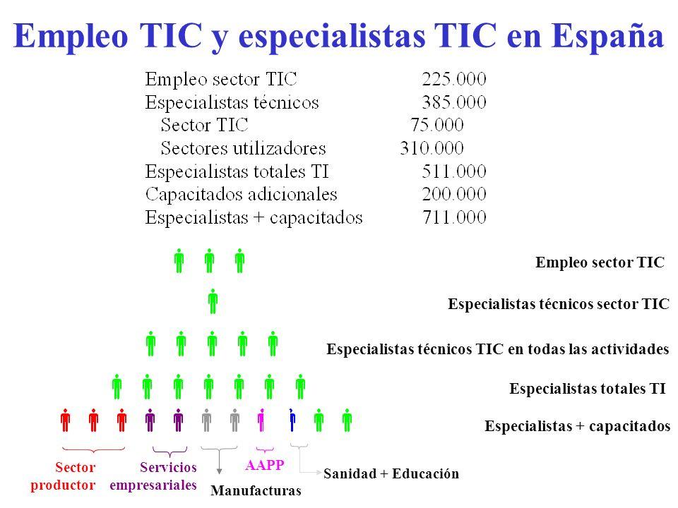 Empleo TIC y especialistas TIC en España