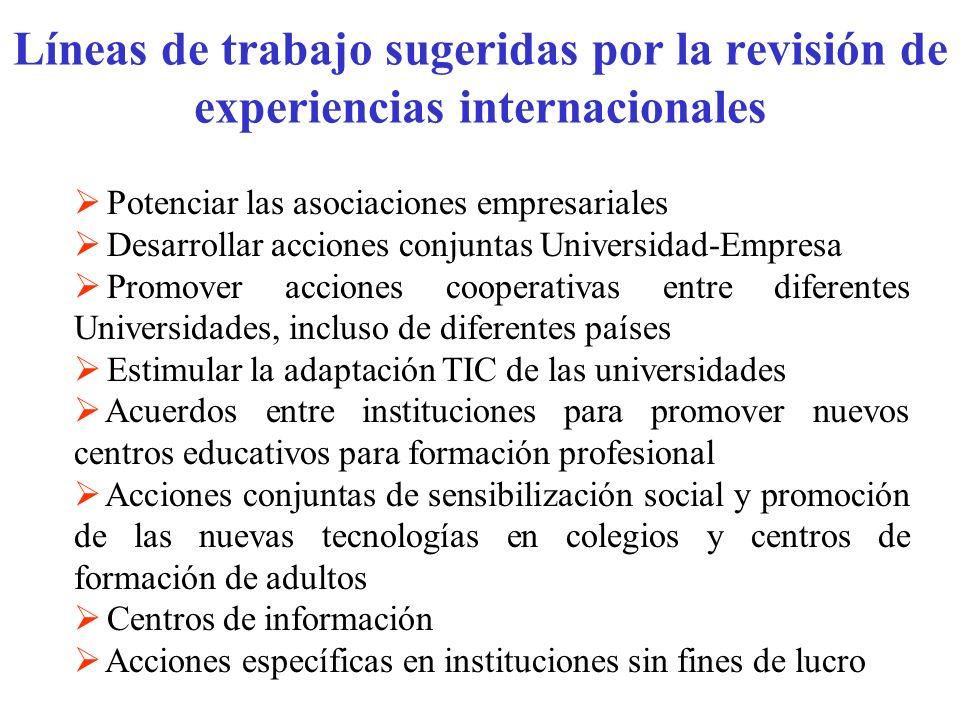 Líneas de trabajo sugeridas por la revisión de experiencias internacionales