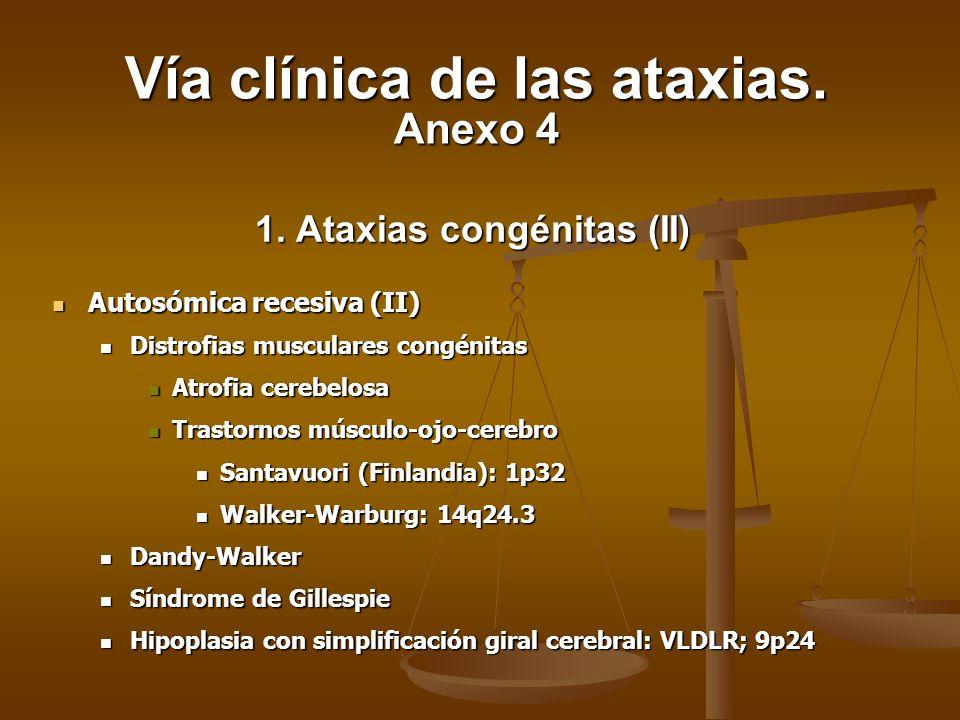 1. Ataxias congénitas (II)