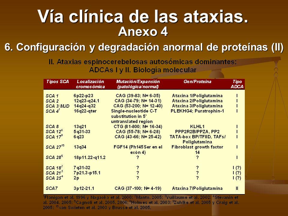 6. Configuración y degradación anormal de proteínas (II)