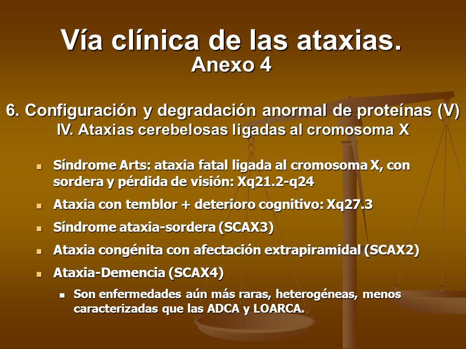 Vía clínica de las ataxias. Anexo 4
