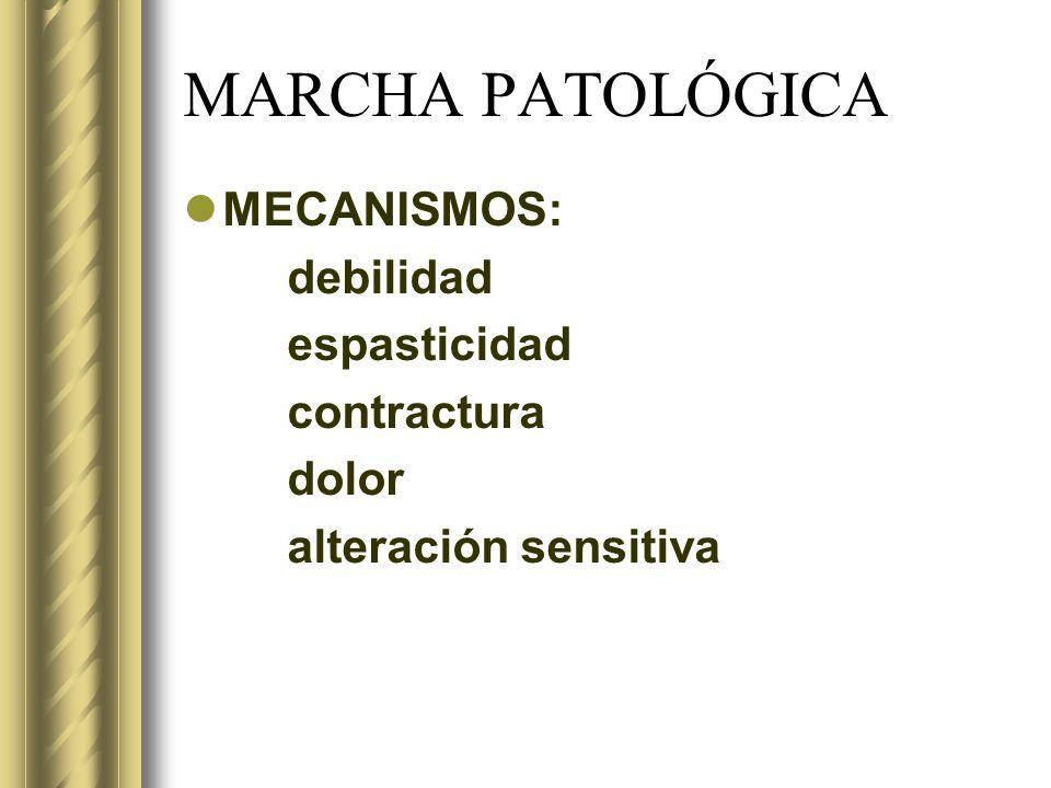 MARCHA PATOLÓGICA MECANISMOS: debilidad espasticidad contractura dolor