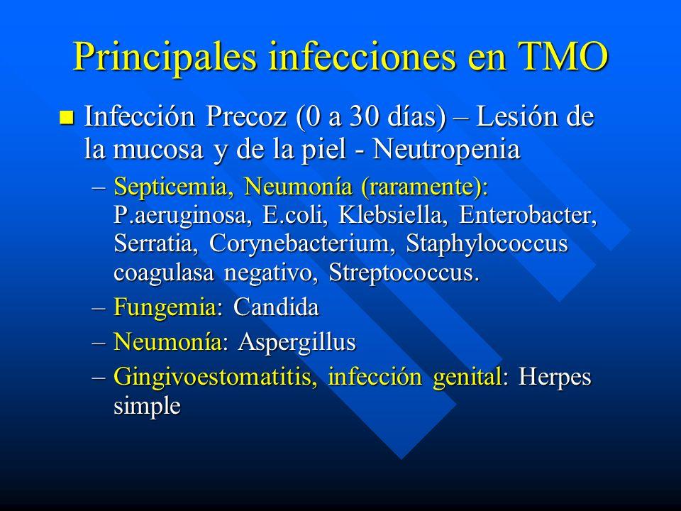 Principales infecciones en TMO