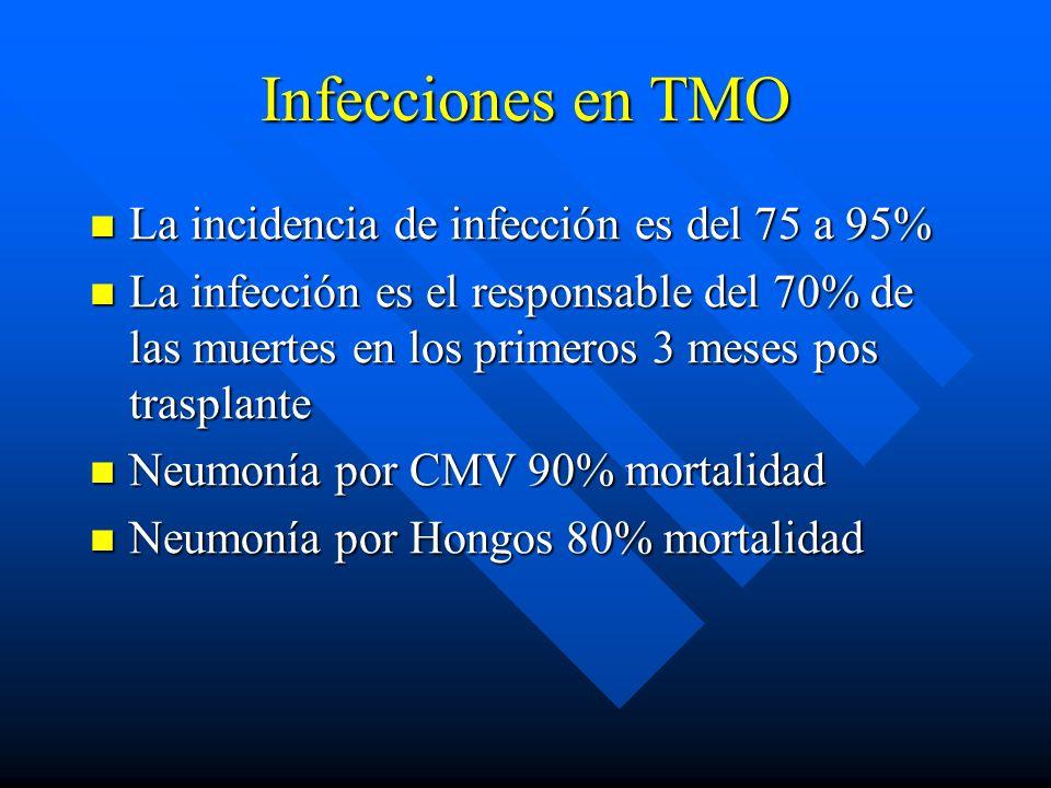 Infecciones en TMO La incidencia de infección es del 75 a 95%