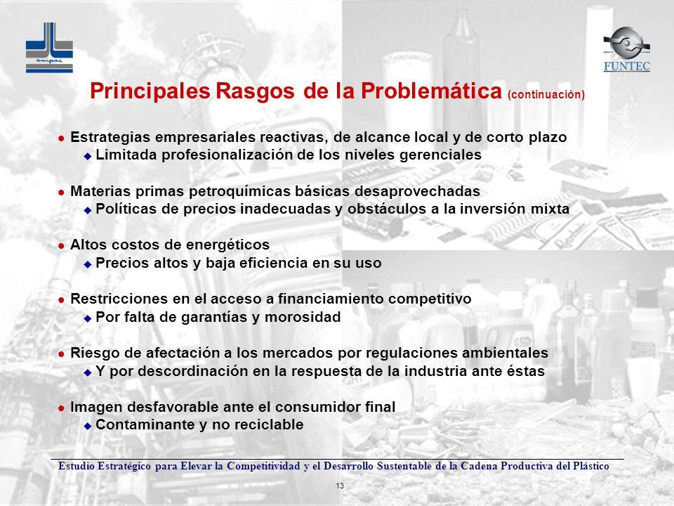Principales Rasgos de la Problemática (continuación)