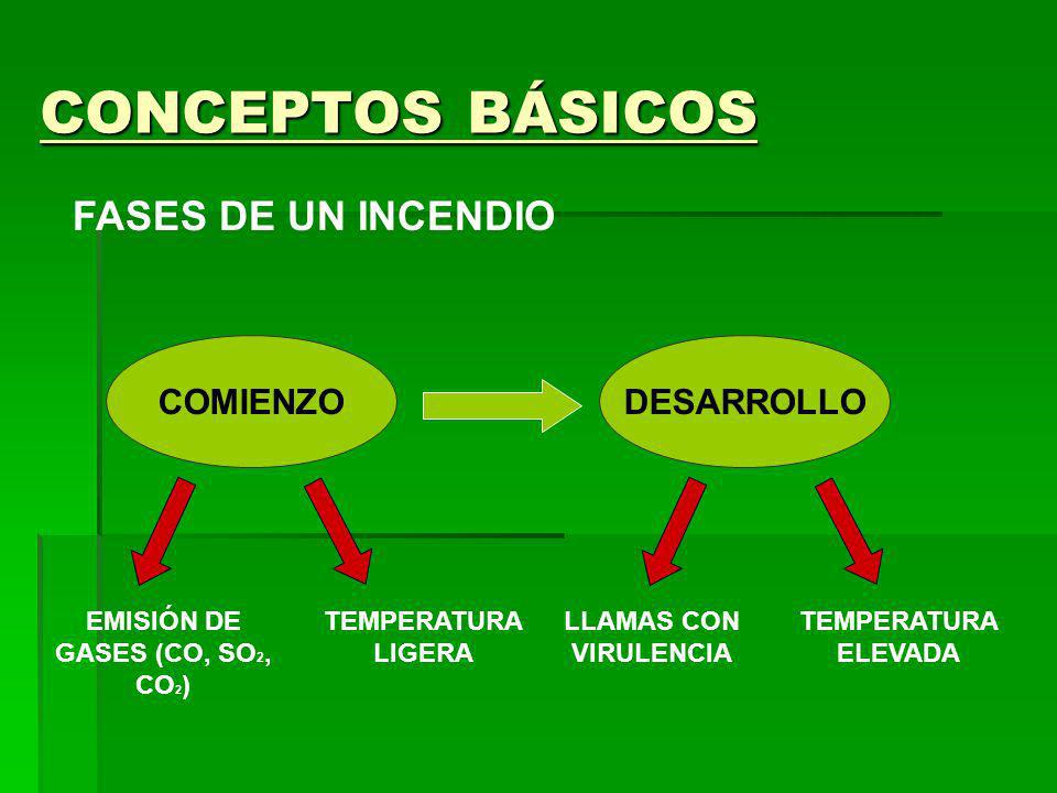 EMISIÓN DE GASES (CO, SO2, CO2)