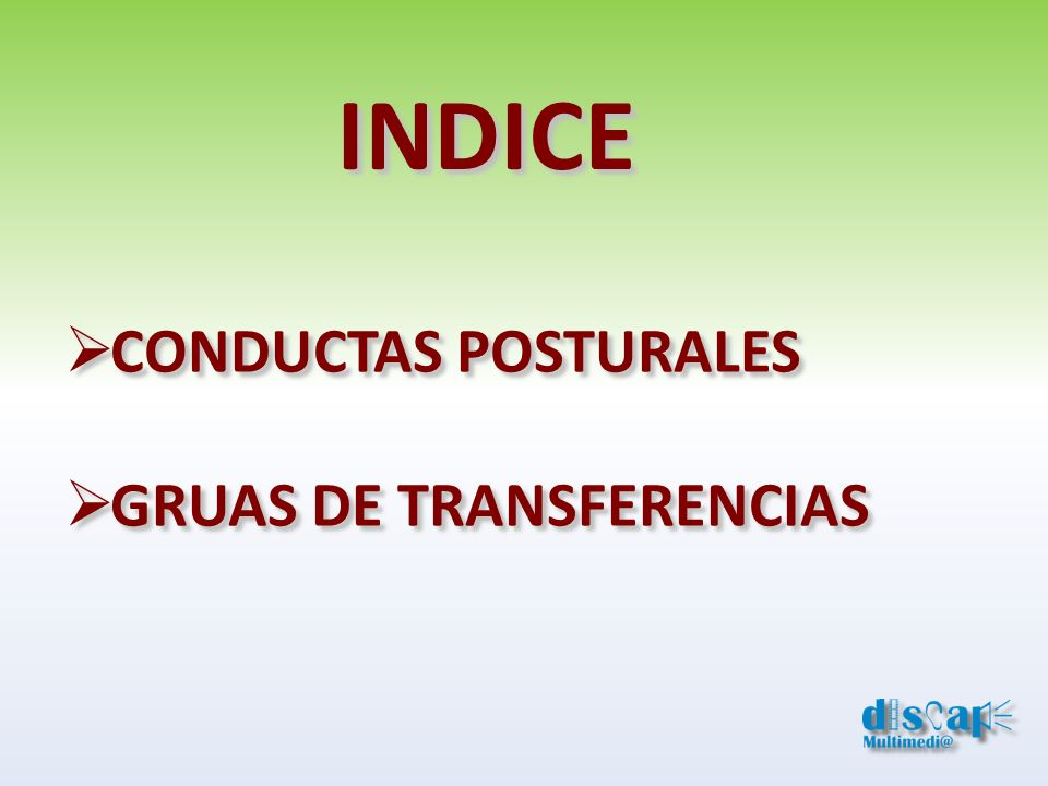 INDICE CONDUCTAS POSTURALES GRUAS DE TRANSFERENCIAS