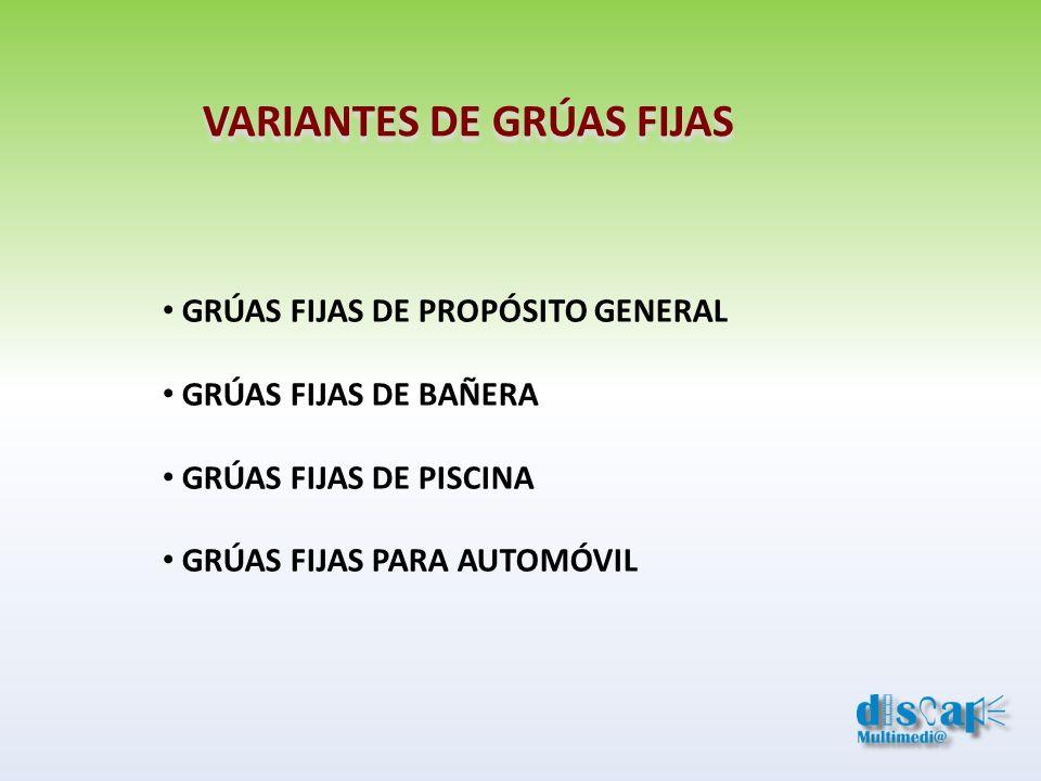 VARIANTES DE GRÚAS FIJAS