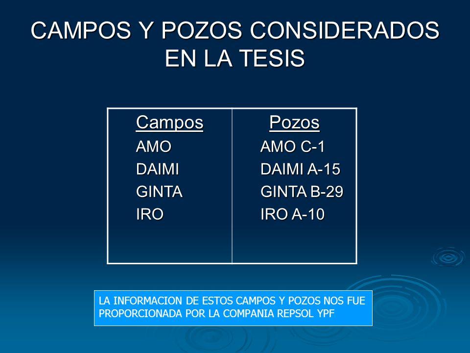 CAMPOS Y POZOS CONSIDERADOS EN LA TESIS
