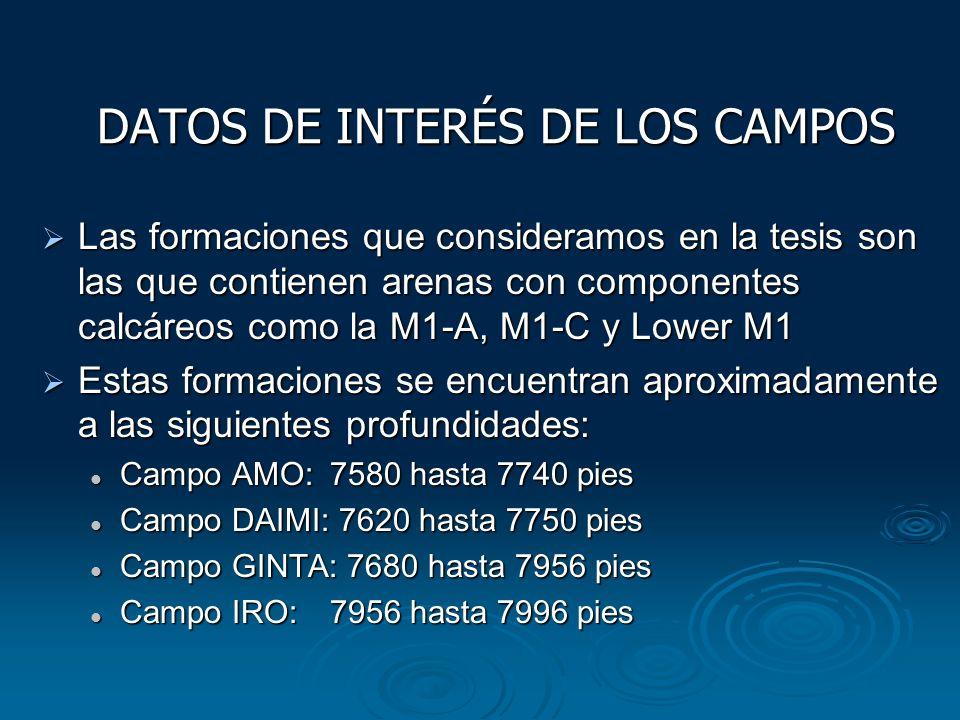 DATOS DE INTERÉS DE LOS CAMPOS