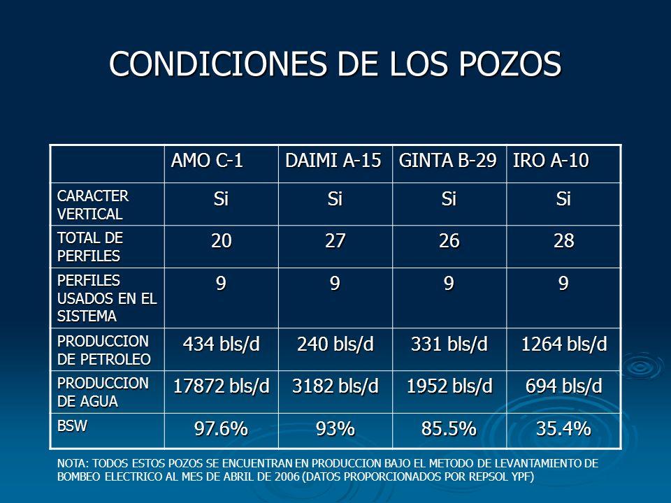 CONDICIONES DE LOS POZOS