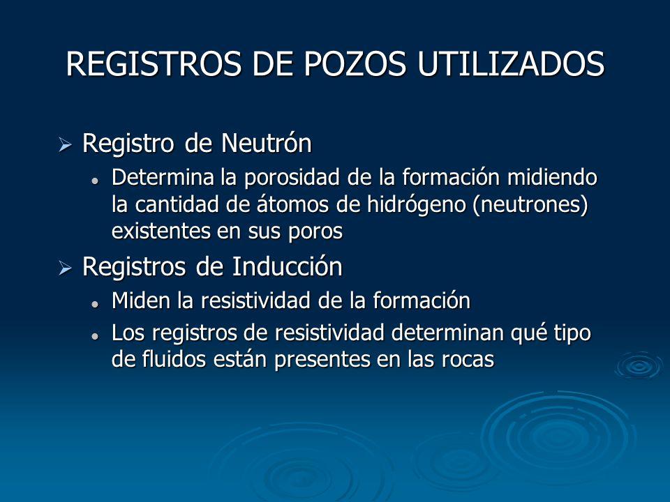 REGISTROS DE POZOS UTILIZADOS