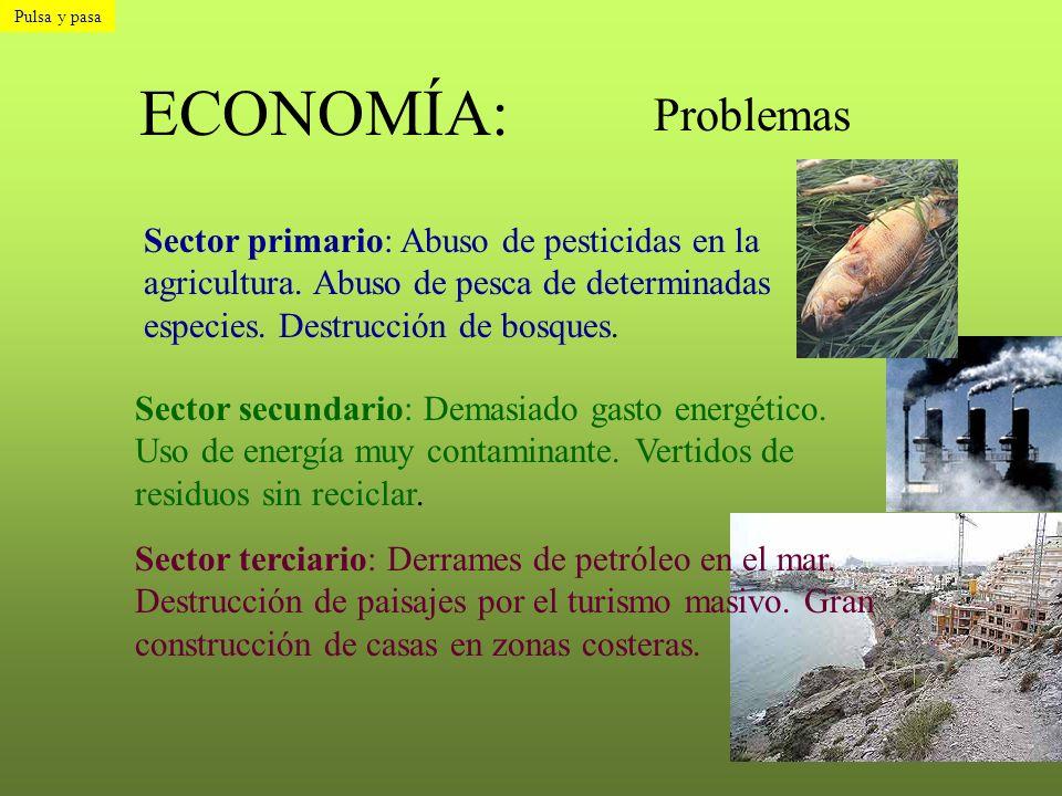 Pulsa y pasa ECONOMÍA: Problemas.