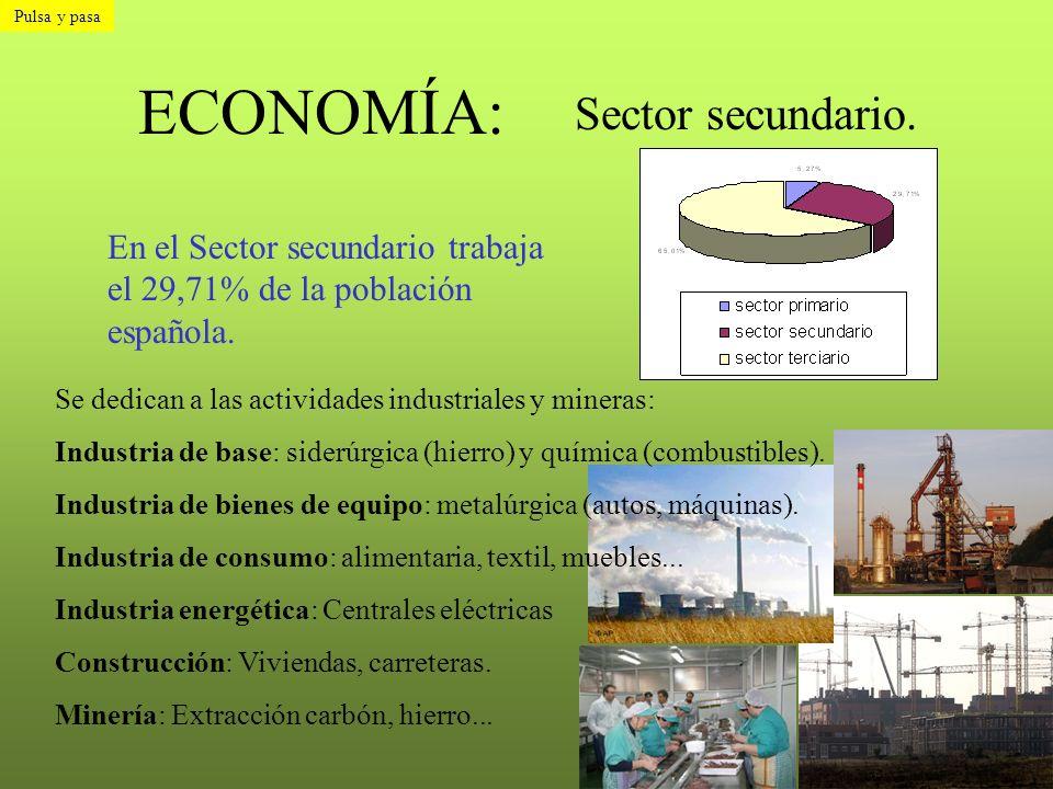 ECONOMÍA: Sector secundario.