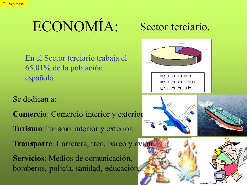 ECONOMÍA: Sector terciario.