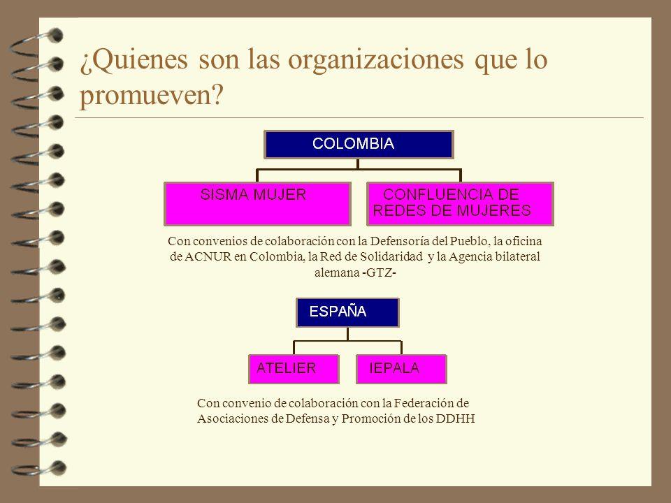 ¿Quienes son las organizaciones que lo promueven