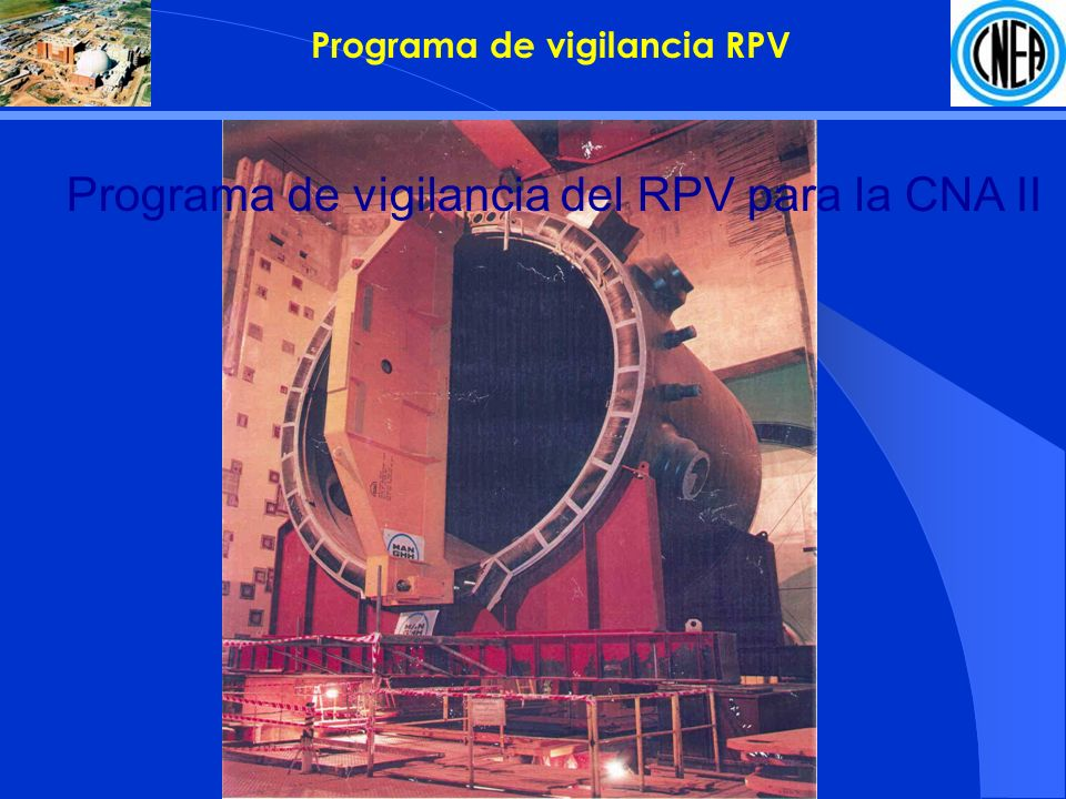 Programa de vigilancia RPV