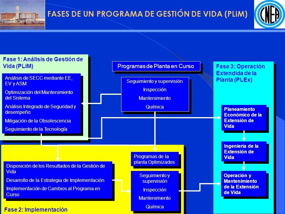 FASES DE UN PROGRAMA DE GESTIÓN DE VIDA (PLiM)