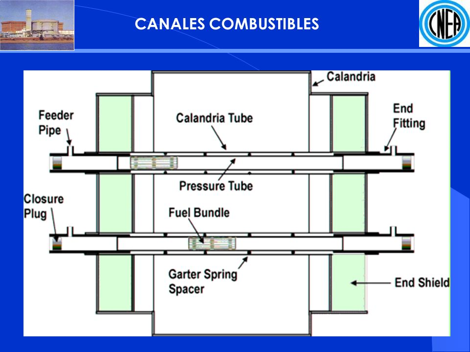 CANALES COMBUSTIBLES