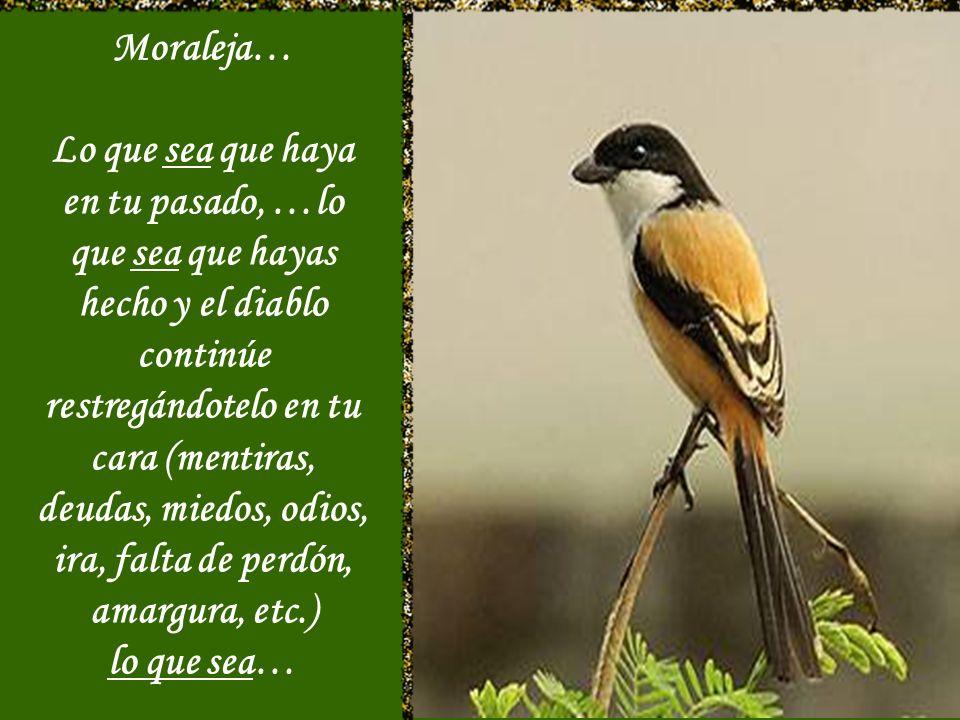 Moraleja…